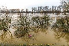 Hochwasser-06