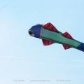 Drachen,kites
