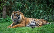 Zoo_Krefeld-02