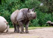 Zoo_Krefeld-24